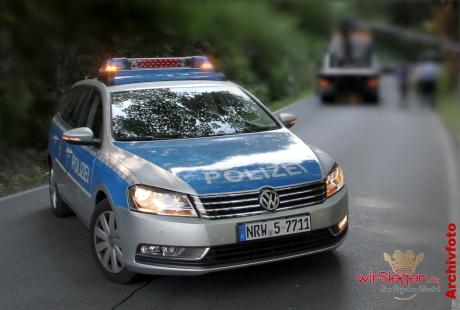 Polizeiauto 005