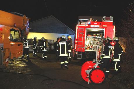 Feuerineichen2