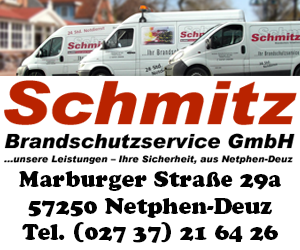 Schmitz-300-250