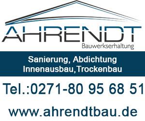 Ahrendt-300-250