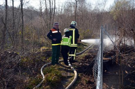FW-Wald-Eichert09