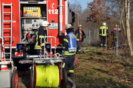 FW-Wald-Eichert29