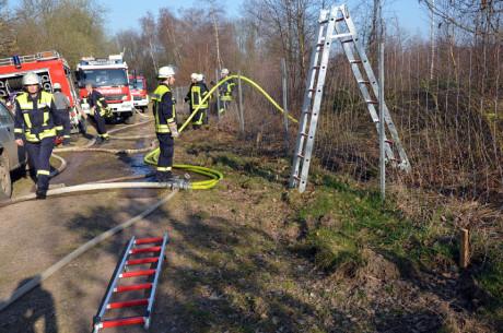 FW-Wald-Eichert41