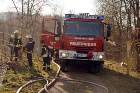 FW-Wald-Eichert42