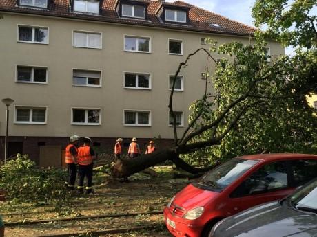 6_4_Beseitigung_Sturmschaeden_Essen1