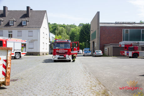 Feuer 4 ROLAND 008