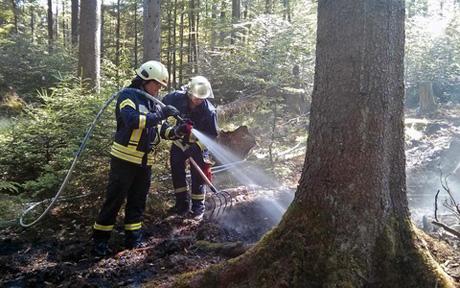WaldbrandKreuztal