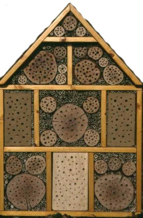 wildbienen schutz im eigenen garten wirsiegen das siegerland portal. Black Bedroom Furniture Sets. Home Design Ideas