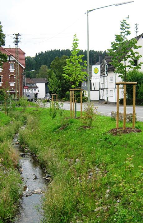 2014-08-11_Kreuztal_Baumspende_Foto_Stadt_Kreuztal