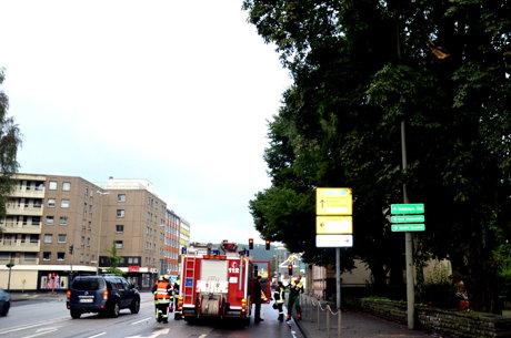 2014-08-16_Siegen_Ast_auf_Fahrbahn_Foto_Schade_02