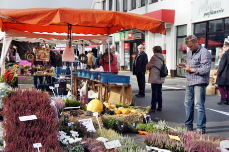 2014-10-05_Wilnsdorf_Bauern_und_Naturmarkt_Foto_Hercher_1