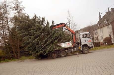 Weihn-Baum-Netph09