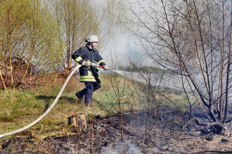2015-04-18_Wilnsdorf-Rinsdorf_Wald2_Waldbrand_Am_Aelkersberg_Foto_Hercher_5
