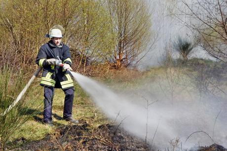 2015-04-18_Wilnsdorf-Rinsdorf_Wald2_Waldbrand_Am_Aelkersberg_Foto_Hercher_6