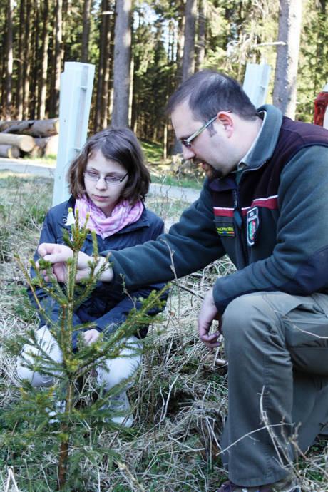 Christian Hahne kontrolliert mit Tine eine Kulturfläche. (Foto: Christa Vitt-Lechtenberg, Wald und Holz NRW)