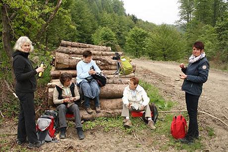 12. Hilchenbacher Frauenwanderung im Mai 2015 | Foto: Stadt Hilchenbach