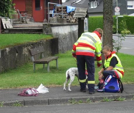 FeuerwehrSiegenRettungshunde