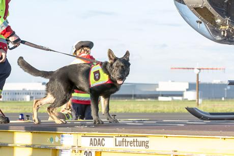 2015-09-03-Hundestaffel-KAYFLY-II-20