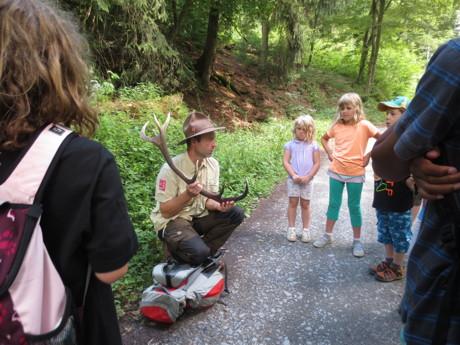 Tierspuren im Wald – Wanderung mit dem Ranger. (Foto: Stadt Hilchenbach)