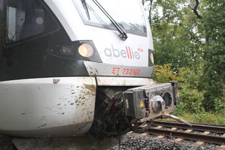 2015-10-09_Kreuztal-Krombach_Zug kollidiert mit Kühen_Fotos_wirSiegen_02