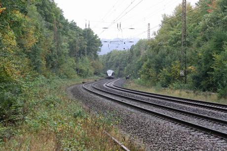 2015-10-09_Kreuztal-Krombach_Zug kollidiert mit Kühen_Fotos_wirSiegen_04