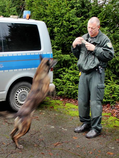 2015-12-18_Siegen_Training_Polizei_Diensthunde_Foto_Hercher_10