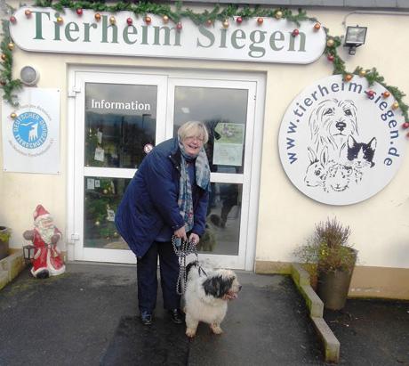 Pflegehund-Peter
