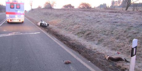 Bei einem Wildunfall wurden ein Motorradfahrer und sein Sozius leicht verletzt. Foto: Polizei