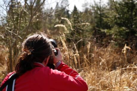 Die Fotowanderung mit Fotograf Benjamin Hein findet am 17. April statt. Foto: Stadtverwaltung