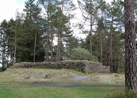 Altenberg6