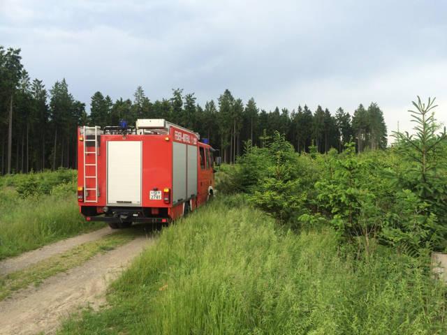 2016-06-08_Wilgersdorf_Schwerer Fahrradunfall auf der Tiefenrother Höhe_Foto_Feuerwehr_03