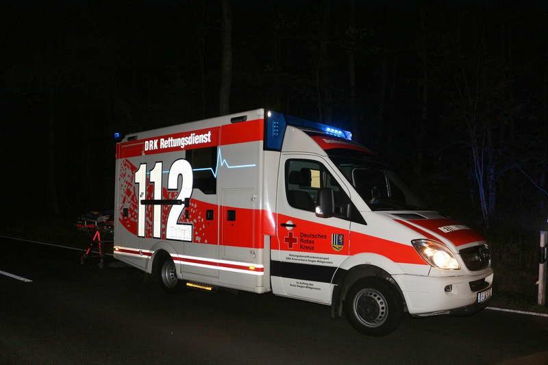 2016-09-14_neunkirchen_schraenke_linienbus_wildschweine_c_mg-2