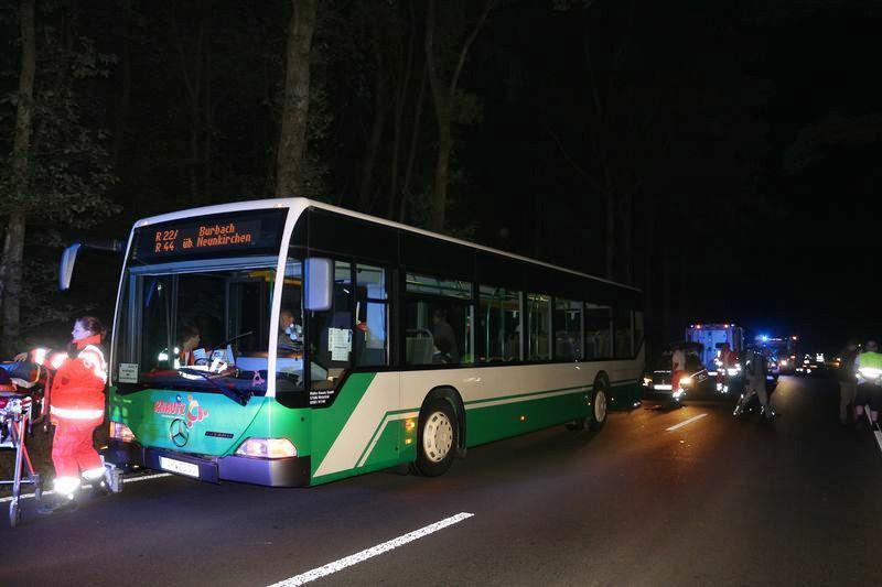 2016-09-14_neunkirchen_schraenke_linienbus_wildschweine_c_mg-4